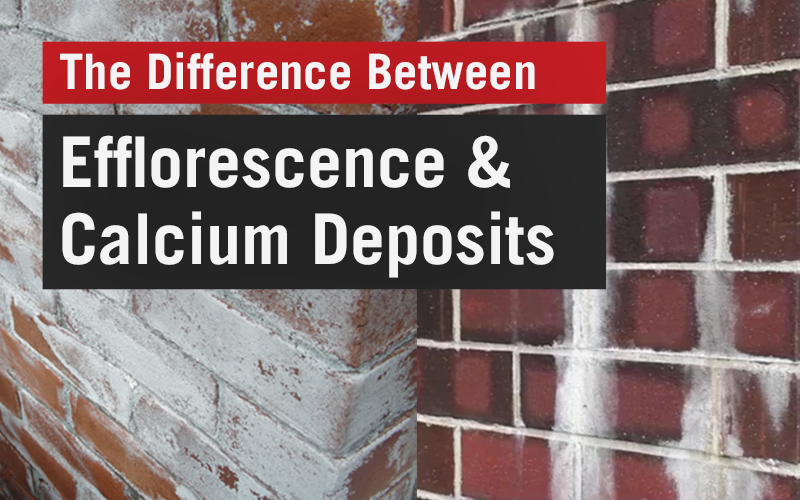 The Difference Between Efflorescence and Calcium Deposits